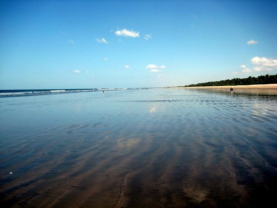 Barcelo Montelimar : The beach at low tide