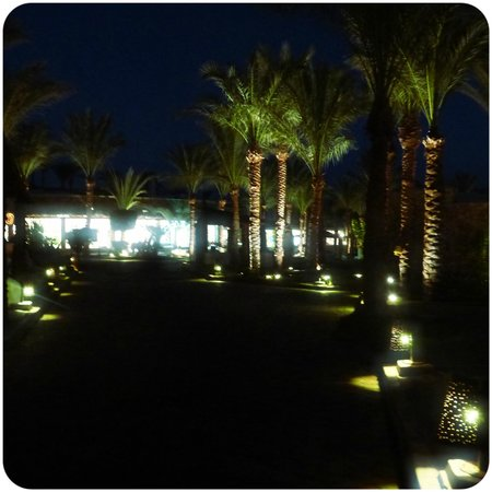 Reef Oasis Beach Resort : Ночная территория)