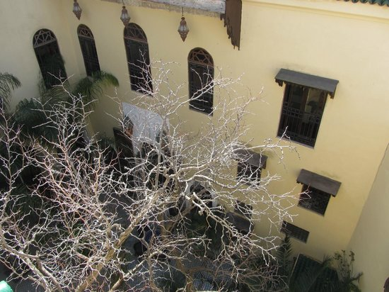 Riad Le Calife: View of the courtyard from the rooftop terrace