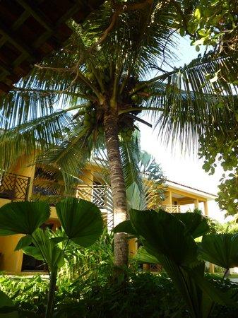 Hotel Aconchego Porto de Galinhas: Frente ao quarto
