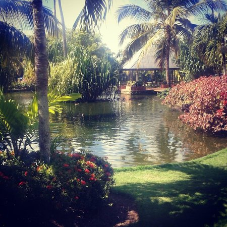 Tropical Princess Beach Resort & Spa: Estanque y pérgola