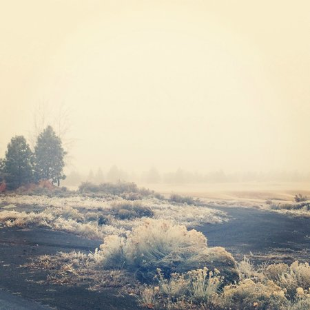 Pronghorn Resort : Early early morning landscape