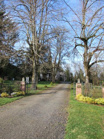 Dundee Manor Bed and Breakfast: The grand entrance to Dundee Manor