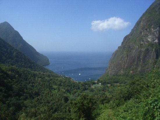 Ladera Resort: View from the room
