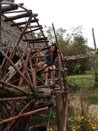 Tra Que Water Wheel: The waterwheel!