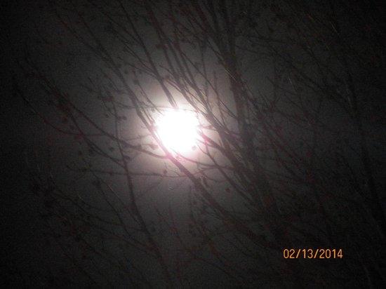 Gold Beach Inn : The moon