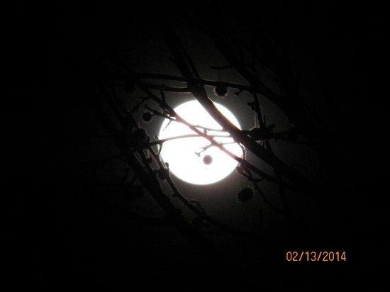 Gold Beach Inn: The moon