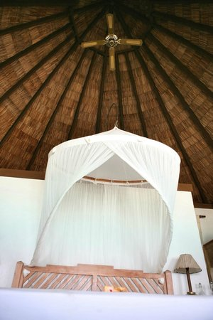 Coco Palm Dhuni Kolhu: Наша вилла (стандарт, beach villa, номер 45)