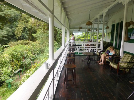 Asa Wright Nature Centre and Lodge: the veranda