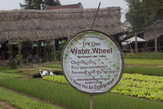 Tra Que Water Wheel