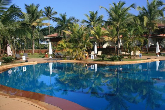 Caravela Beach Resort: Бассейн