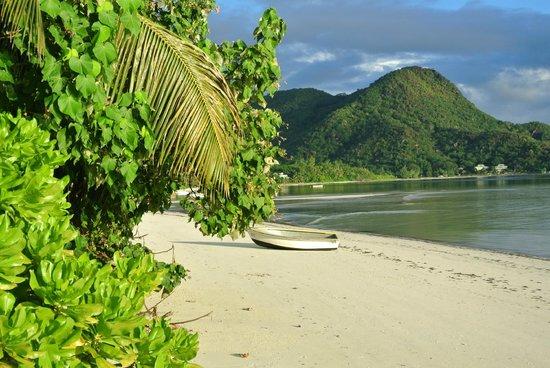 Indian Ocean Lodge: plage