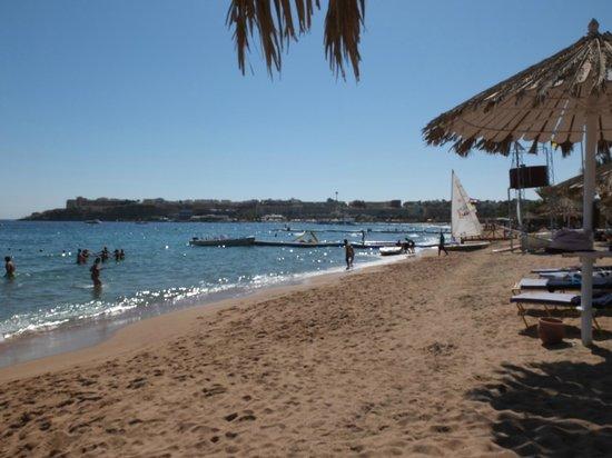 Hilton Sharm Dreams Resort : Hilton Beach