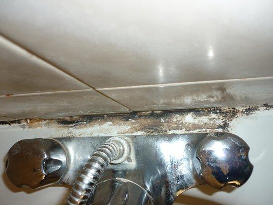 Hylands Hotel : dirt behind taps