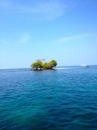 Mango Bay Resort: A snorkeling island we visited with the hotel's boat
