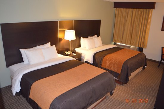 Comfort Inn & Suites Fall River: New Bedding!