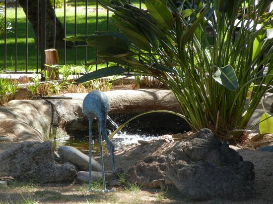 SmokeTree Resort & Bungalows : they have their own little koi pond