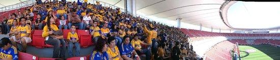 Estadio Omnilife: Invasión Tigres 2014
