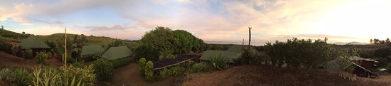 Palmlea Farms Lodge & Bures: Panoramic view from this paradisiac Eco Hideaway