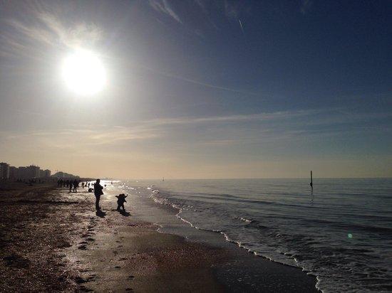 De Panne Beach: La plage