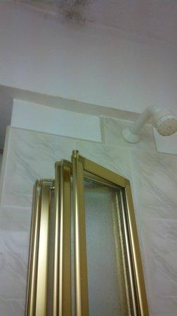 Falls Hotel & Spa : Bathroom ceiling
