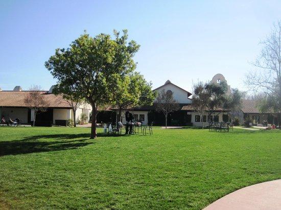 Bridlewood Estate Winery: 庭