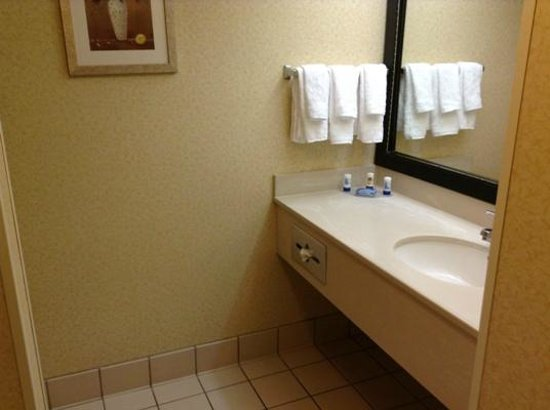 Fairfield Inn & Suites Clearwater: Spacious clean bathroom.