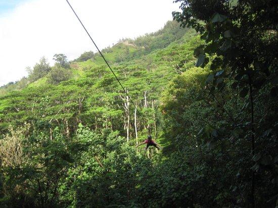 Koloa Zipline: volo del'angelo is in Kauai?!
