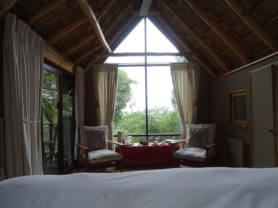 The Phantom Forest Eco-Reserve: our lovely room