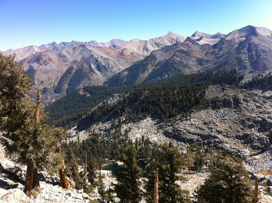 Silver City Mountain Resort: View from Franklin pass, Sequoia Park