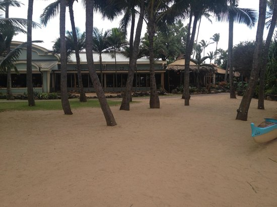 Delicious - Picture of Mama's Fish House, Paia - TripAdvisor