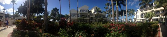 Flamingo Beach Resort: Garden area...panoramic