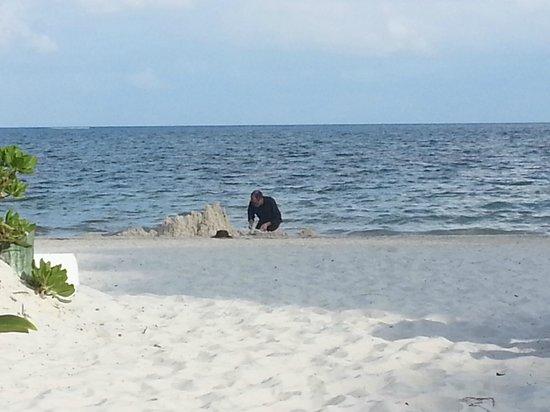 Acamaya Reef: Beach at Acamaya