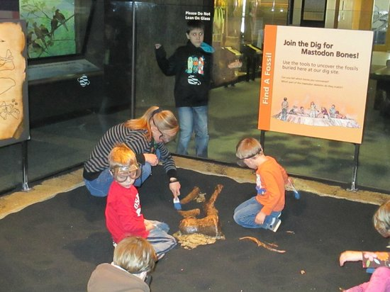 Rochester Museum & Science Center : archeology