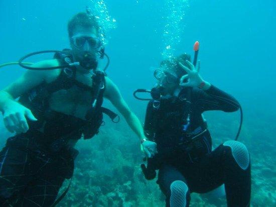 Blue Life Centro de Buceo: 1 de las 5 inmersiones