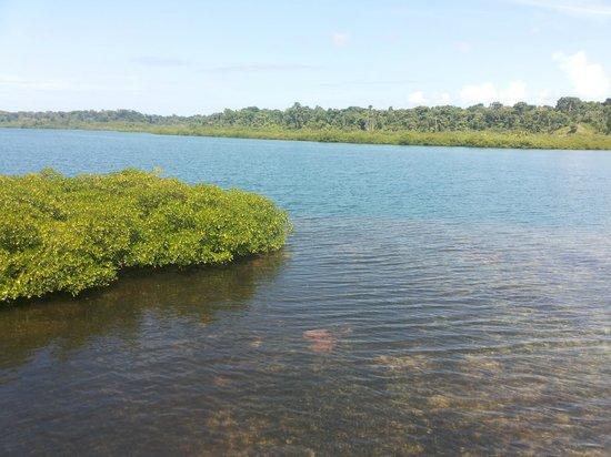 Laguna Azul Eco Lodge: Mar, manglares y corales