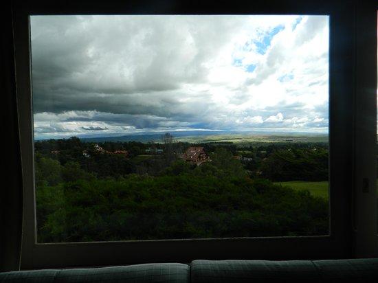 Castillo de Mandl: vista desde Living