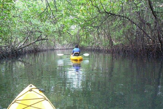 Laguna Azul Eco Lodge: Paseo en kayac, con David, nuestro guia aborigen. Inolvidables lugares