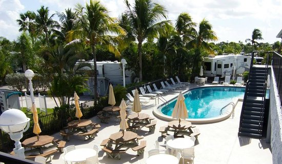 Outdoor Resorts of Chokoloskee : Main Pool
