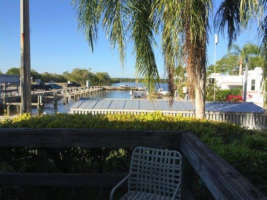 Outdoor Resorts of Chokoloskee : Motel Marina View