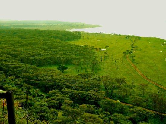 Parc national de Nairobi : Beautiful view