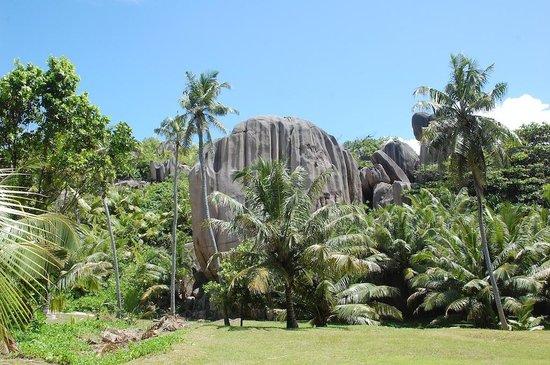 Sisters Islands Private : Jardin....