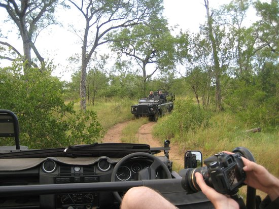 Lion Sands River Lodge : Range Rovers in the bush