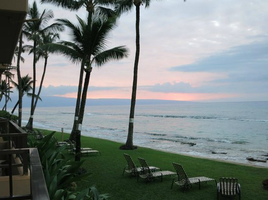 view from our balcondy of ocean grassy lounge area picture of rh tripadvisor ie