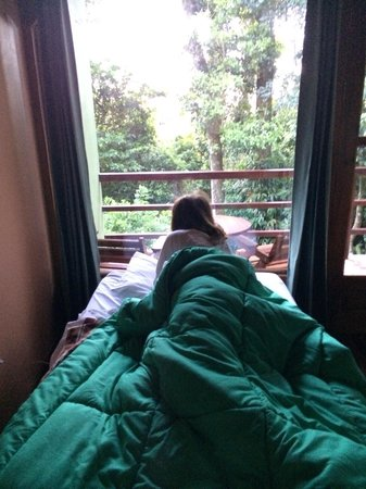 Cala Lodge: My bed in the forest!