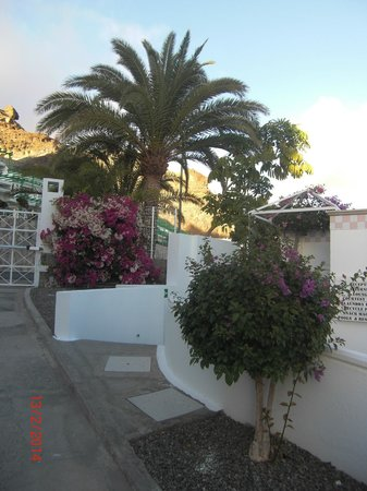 Marina Bayview: Nydelige Bougenvilla(blomster) over allt