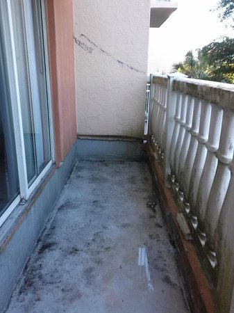 Sheraton Suites Cypress Creek Ft. Lauderdale : Moldy Balcony