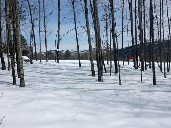 Garnet Hill Lodge and Ski Resort : View from the Sugarhouse Trail