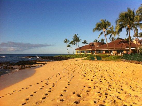 Sheraton Kauai Resort : Sheraton Grounds