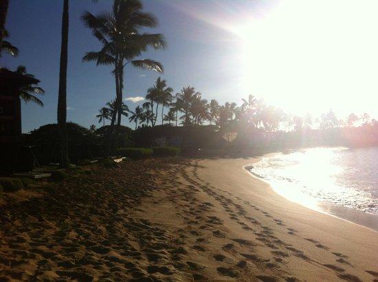 Sheraton Kauai Resort : Sunrise at the Sheraton